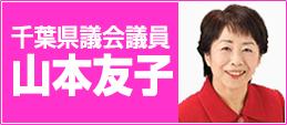千葉県議会議員 山本友子プロフィール